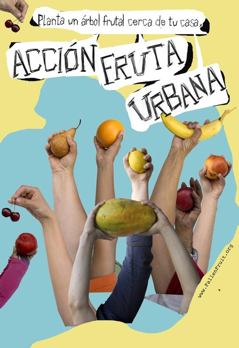 tijuana 800 Fruta Urbana_mexico